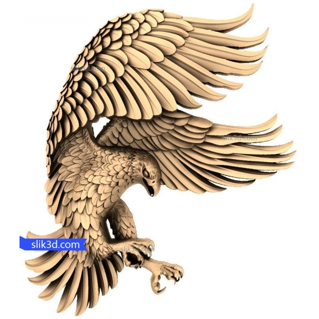 Eagle No. 7